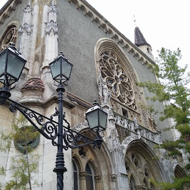 Budapedt trip by Tiffany Wu - Buildings & Architecture Architectural Detail