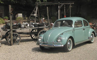 Volkswagen Maggiolino Berlina 6 Volts Rent Liguria
