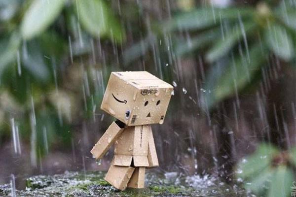 Nằm mơ thấy mưa