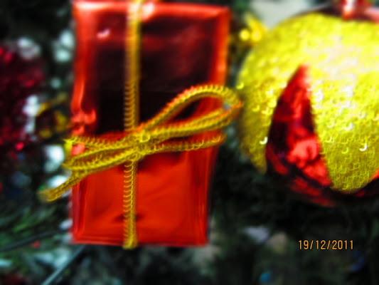 Doni di Natale di Luna_75