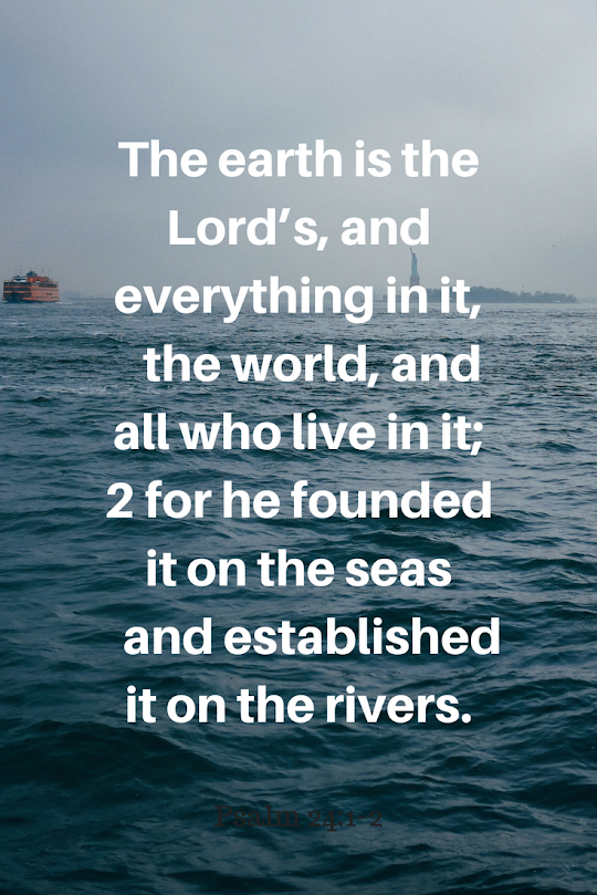 My thoughts as I have chosen to pursue a more sustainable lifestyle. Once my eyes were opened and I started looking around I wondered how I'd ignored the problem for so long. #kellybagdanov #sustainable #sustainability @greendeal @plasticfree @plasticfreejuly # zerowaste #goingzerowaste #whygogreen #whylivesustainably #christianevnvironmentalist