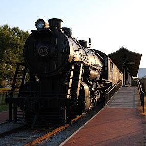Train by Rohan Jackson - Transportation Trains ( train )