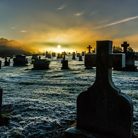 Morning Rest by Kevin Frick - City,  Street & Park  Cemeteries ( cemetary, sunrise, crosses )