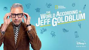 The World According to Jeff Goldblum thumbnail