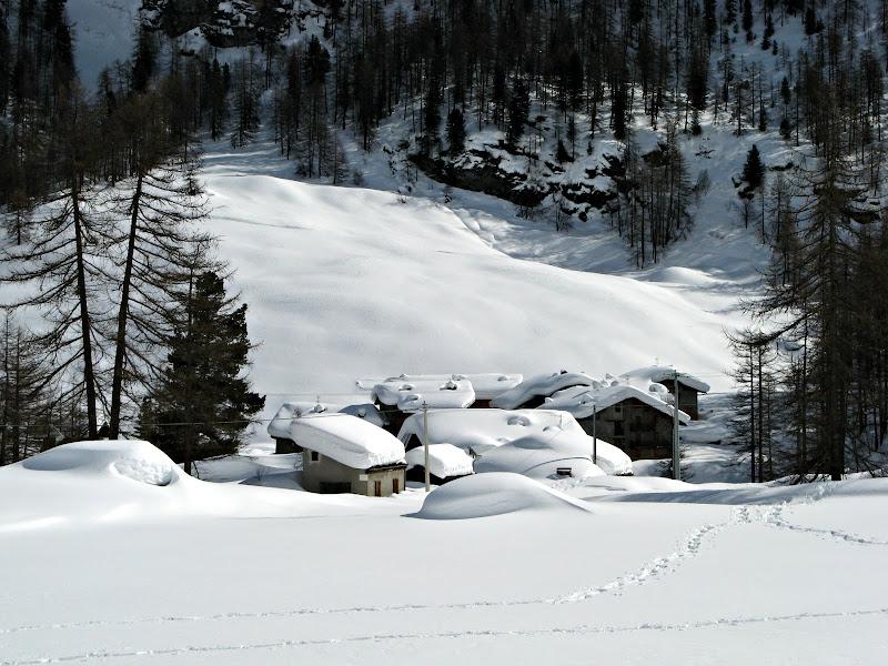 Tracce nella neve di donyb