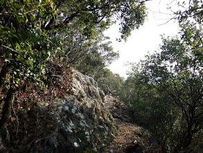 岩場の見晴台(左上に)