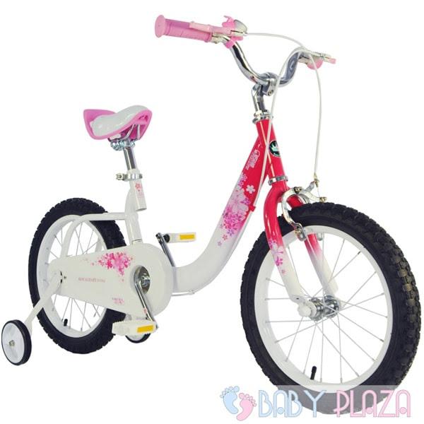 Xe đạp RoyalBaby RB-19 5