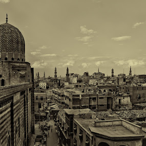Old Egypt by Ahmed Yousry - Buildings & Architecture Public & Historical ( history, old, sepia, travel, egypt )