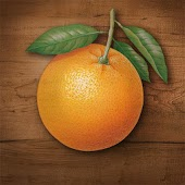 My Port Orange