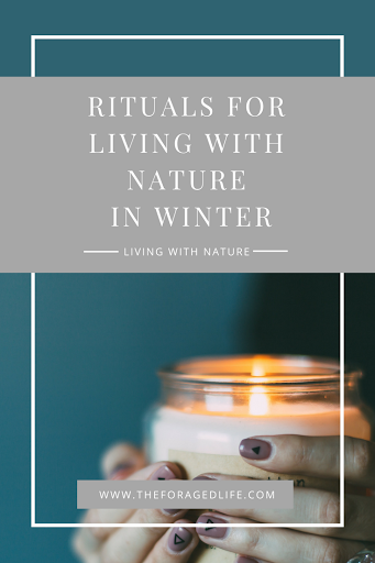 Rituals for Living with Nature in Winter | A Guide by The Foraged Life