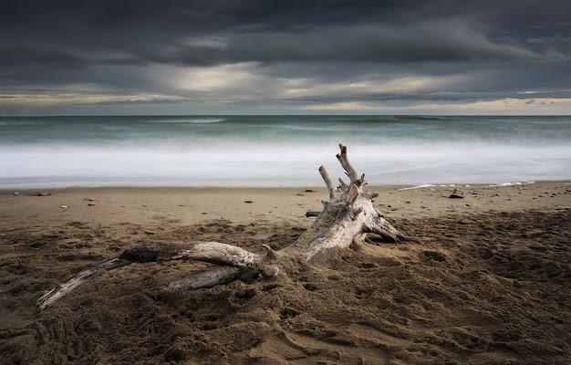 'Spiagge deserte' di francesca_ciarlantini