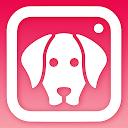 DogCam - Dog Selfie Filters and Camera APK