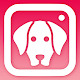 DogCam - Dog Selfie Filters and Camera APK