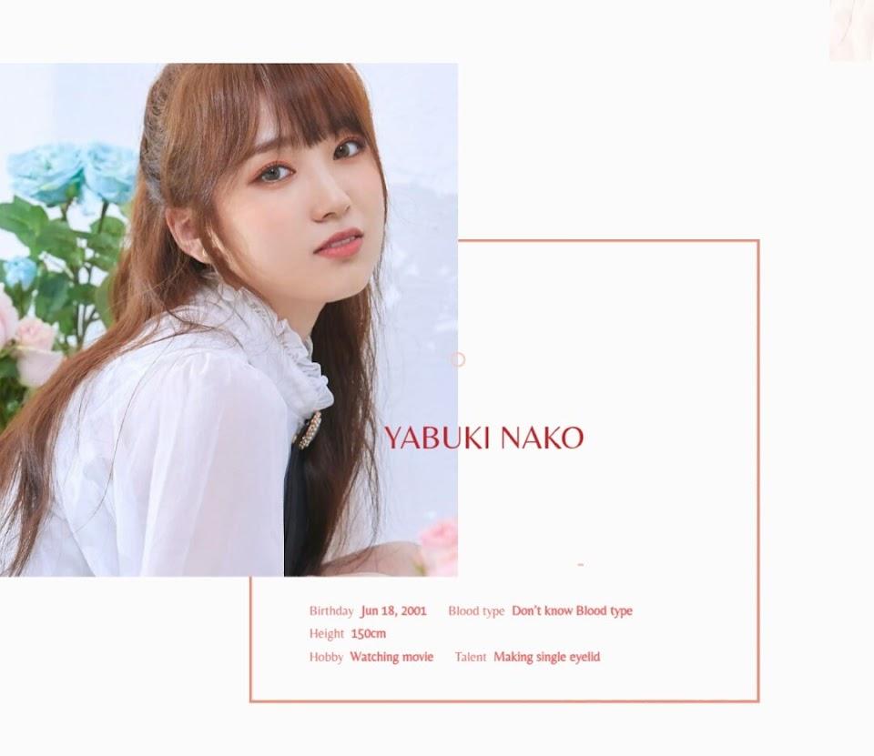YabukiNako-Profile