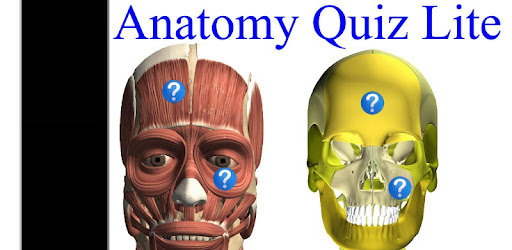 Anatomy Quiz Free - Apps on Google Play