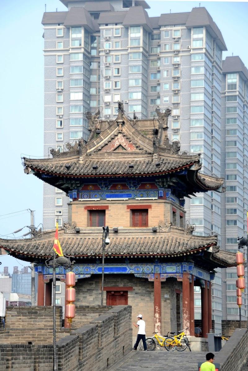 Nuova Cina Antica di Migliu