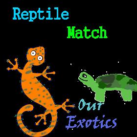 Reptile match