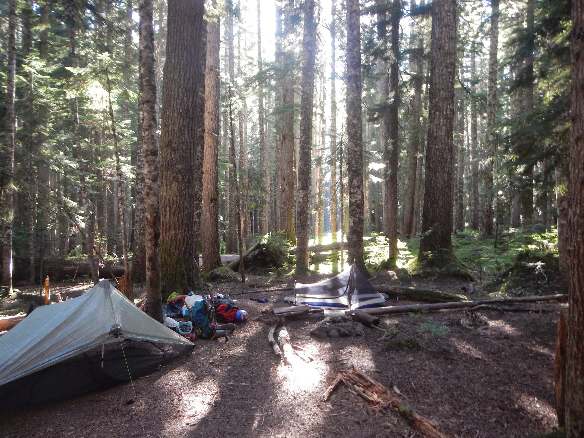 Photo: Defeated, we set up camp along a creek on the west side of Glacier Peak