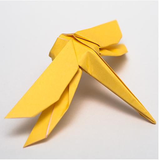 Bugs Origami