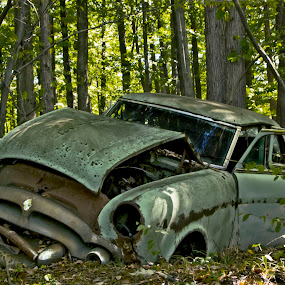 Burried Car by A tiny Place - Transportation Automobiles ( michigan, vintage, cars, junk yards, rusty )