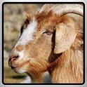 Goat Simulator 2016 icon