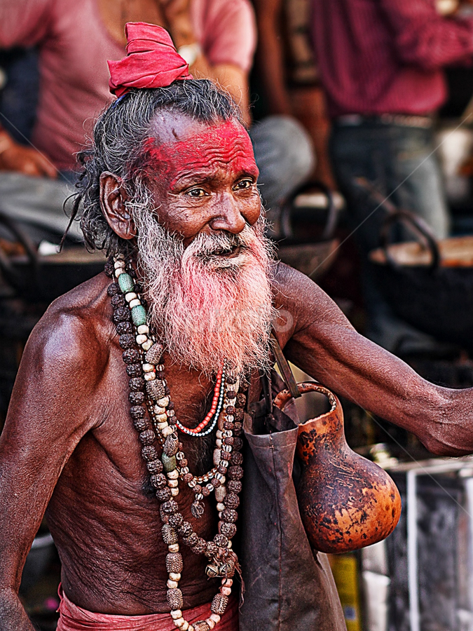 sadhu by Bharat Dudeja - People Street & Candids ( india, oldman, sadhu, portrait,  )