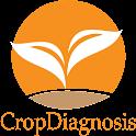 CropDiagnosis icon