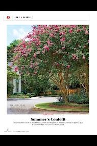 Southern Living- screenshot thumbnail