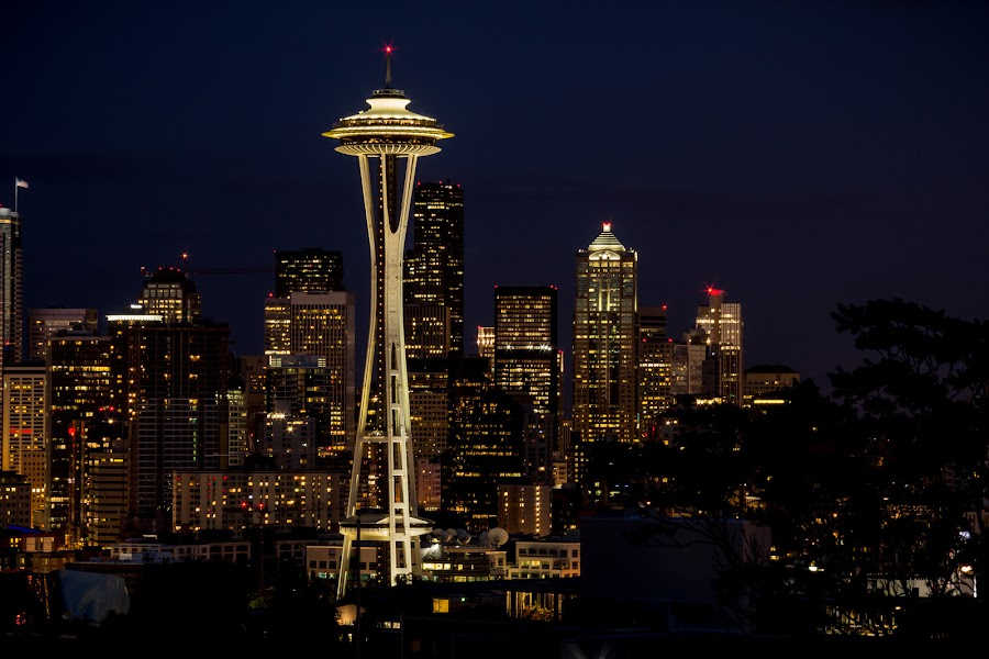 Seattle Skyline by Ruth Sano - City,  Street & Park  Night ( , city at night, street at night, park at night, nightlife, night life, nighttime in the city )