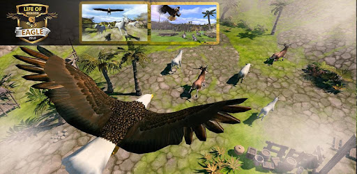 Life of Golden Eagle Simulator 3D - Bird Simulator - Apps on Google Play
