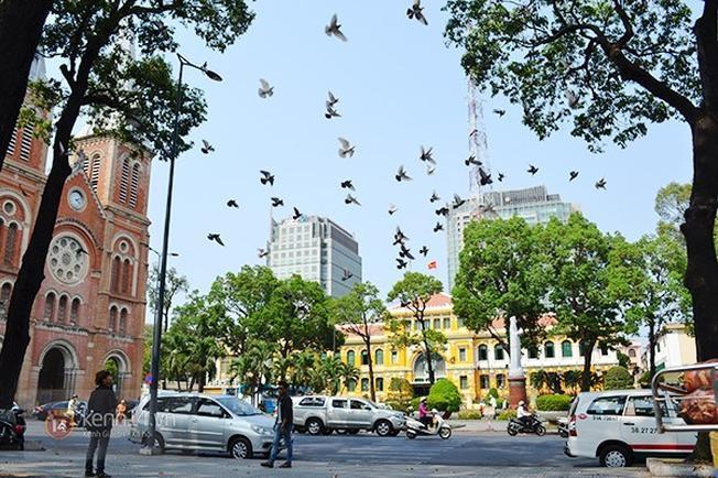 Đô thị tấp nập Sài Gòn