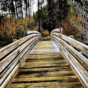 Catherine creek bridge by D.j. Nichols - Instagram & Mobile Android ( creek, bridge )