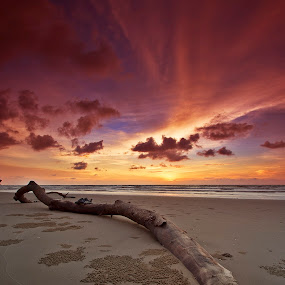 What's Left... by Andrew Micheal - Landscapes Beaches
