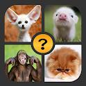 4 Pics 1 Word - Games 2019 icon