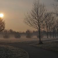 Alba invernale al Parco Nord di Milano di