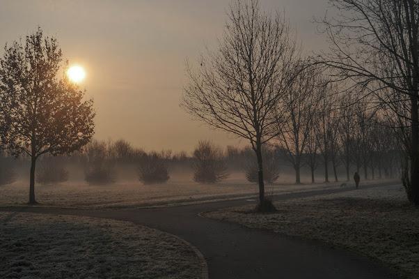 Alba invernale al Parco Nord di Milano di emanuela_terzi