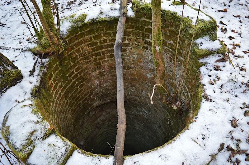 [Fot. 3] Studnia przy leśniczówce | Wygoda (gm. Wielka Nieszawka, pow. toruński), 2017