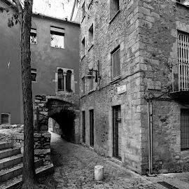 by Gabriela Zandomeni - City,  Street & Park  Historic Districts