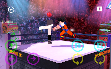 Blocky Wrestle 3D Free Edition 1.1 screenshot 38644