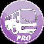 Bus Pucela Pro ? Valladolid Bus Icon