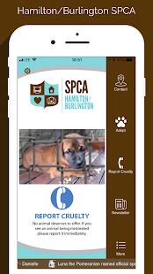 Hamilton/Burlington SPCA - náhled