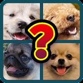 Dog Breed Identifier Game - Dog Quiz