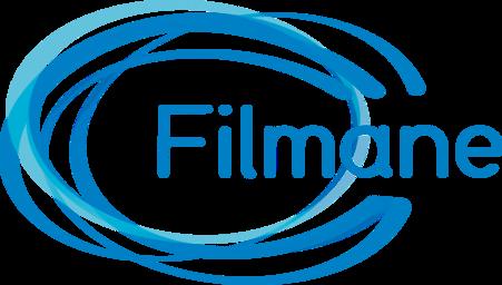 Filmane, société de conseil en Gestion et Finance d'entreprise