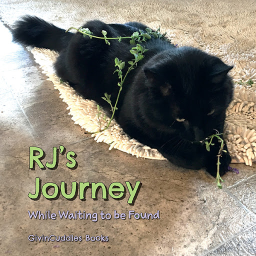 RJ's Journey cover