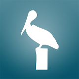 Pelican Mobile file APK Free for PC, smart TV Download