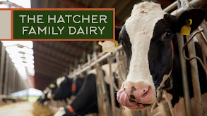 The Hatcher Family Dairy thumbnail