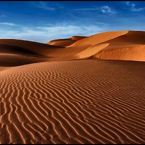 Sahara Dunes by Damjan Voglar - Landscapes Travel