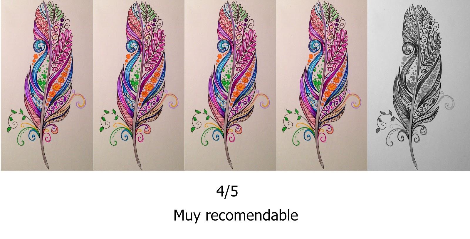 4 de 5 (1).jpg