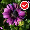 Beauty Purple Love Flower LWP icon
