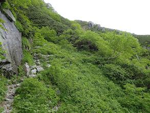 次第に岩の多い道に